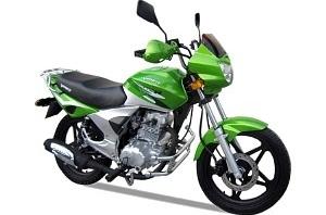 Viper ZS200/V200