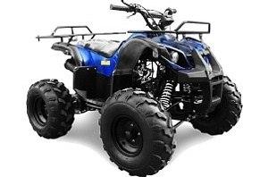 Viper ATV110/11