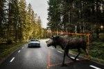 Полу-автопилот станет стандартным в новом Volvo S90 - фото 75