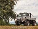 Раритетный грузовик с автографом Шварценеггера пустят с молотка - фото 18