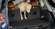 Nissan приспособил для собак еще один кроссовер - фото 1