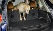 Nissan приспособил для собак еще один кроссовер - фото 17