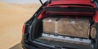 Bentley Bentayga приспособили к соколиной охоте - фото 3