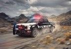 Полиция США получит пикапы Ford F-150 для погонь и бездорожья - фото 6