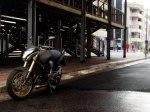 фото Honda CB600F Hornet  №9