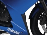 фото Yamaha XJ6 Diversion F (FZ6R) №8