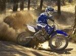 фото Yamaha TT-R125LW/E №5