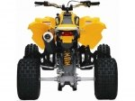 фото Can-Am DS 450 №6