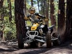 фото Can-Am DS 450 X xc №3