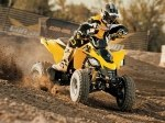 фото Can-Am DS 250 №1