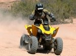фото Can-Am DS 250 №4