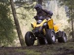 фото Can-Am DS 250 №6