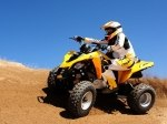 фото Can-Am DS 250 №7