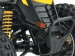 фото Can-Am DS 250 №9
