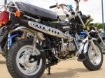 фото Lifan LF110GY-3 (Monkey Bike 110) №4