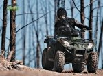 фото Arctic Cat 300 №1