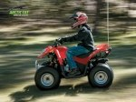 фото Arctic Cat DVX 90 №1