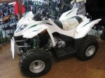 фото Arctic Cat DVX 90 №3