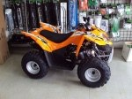 фото Arctic Cat DVX 90 №6