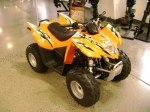 фото Arctic Cat DVX 90 №8
