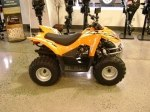 фото Arctic Cat DVX 90 №9