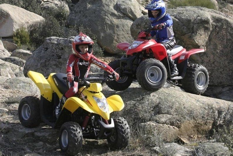 arctic cat 90 dvx купить
