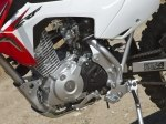 фото Honda CRF125F (Big Wheel) №6