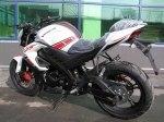 Viper V250-R1 (NK)