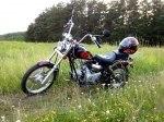 фото Viper Harley (ZS50-F) №4