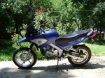Viper XT 200