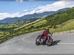 фото Ducati Monster 821 №16