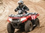 фото Arctic Cat Alterra 450 №2