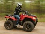 фото Arctic Cat Alterra 450 №4