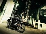 фото Suzuki GSX-S125 №1