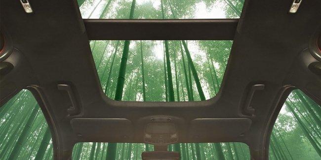 В конструкции автомобилей Ford применят бамбук