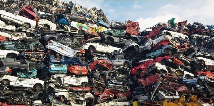 полип мошенничество по утилизации автомобилей взглянул Элвина