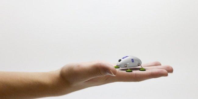 Rolls-Royce будет использовать жуков-роботов для ремонта двигателей