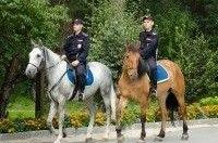 В Киеве появятся конные и мотопатрули полиции