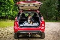 Nissan X-Trail приспособили для перевозки собак