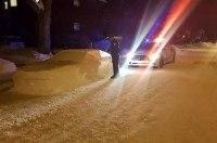Канадские полицейские попытались оштрафовать вылепленный из снега автомобиль
