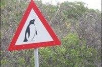 На британских проселках 70% дорожных знаков признали ненужными
