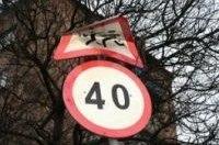 На столичных дорогах появятся «зимние» знаки