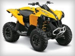 фото Can-Am Renegade №1