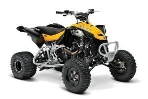 Can-Am DS 450 X mx