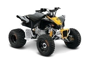 Can-Am DS X