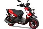 Bashan BWS 150