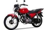 Shineray XY125-10D