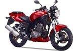 Shineray XY250-5C/XY125-11