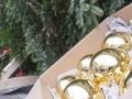 «Мерседес» доставил королеве Великобритании рождественскую елку - фото 9