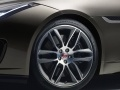 Обновленный Jaguar F-Type подружили с камерой GoPro - фото 44
